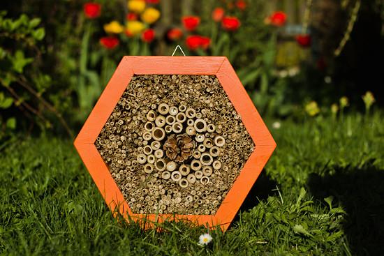 Domeček pro hmyz HEXA 30 cm - Ohniváček