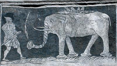 Slon, Prachatice