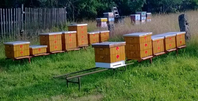Takto bydlí moje včelky