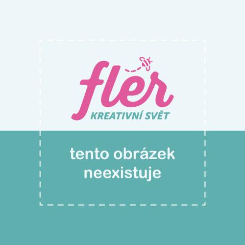 Manuš Počítačová grafika